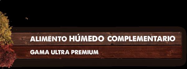 MADERA TITULO COMPLEMENTARIO