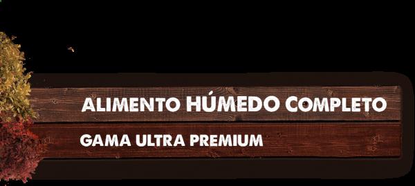 MADERA TITULO HÚMEDO