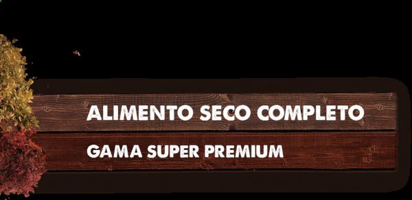 gama-super