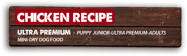 mini-chicken-RECIPE